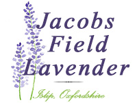 Jacobs Field Lavender Logo